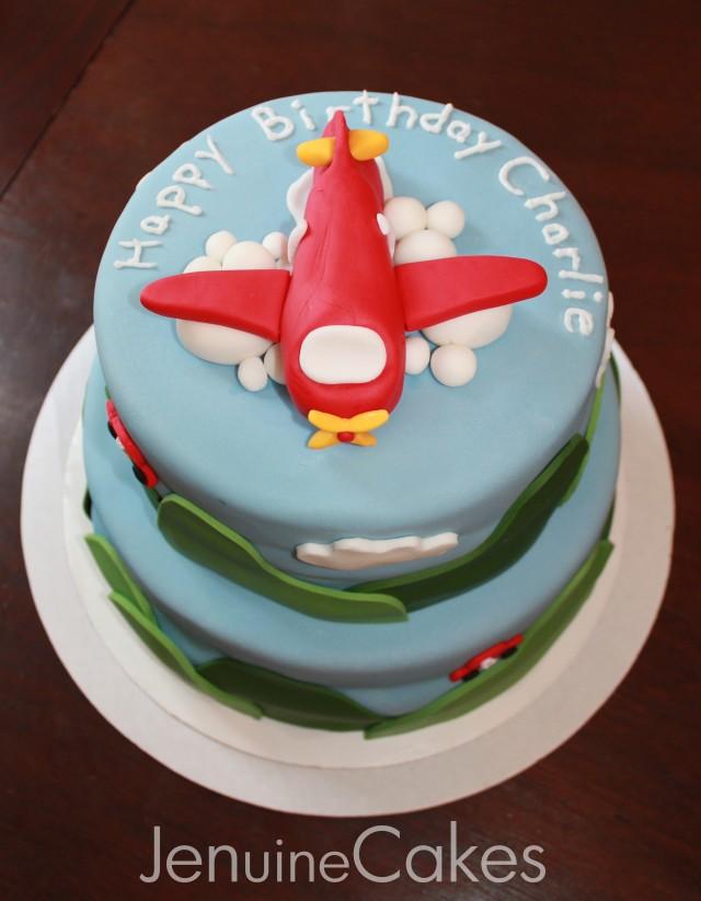 Airplane Birthday Cake 5